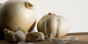 Cibule, česnek, pažitka