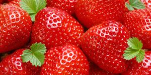 Na jahody
