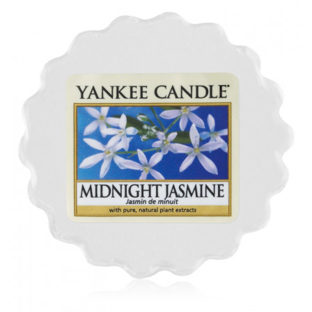 YANKEE CANDLE vosk - Midnight Jasmine 22g