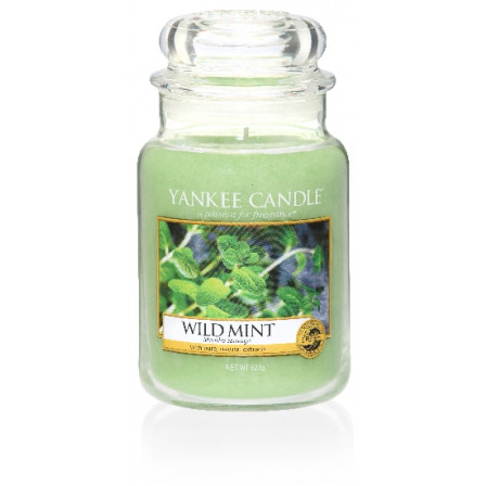 YANKEE CANDLE Classic velký - Wild Mint 625g