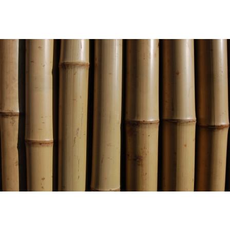 Bambusová tyč 180cm 15-17mm