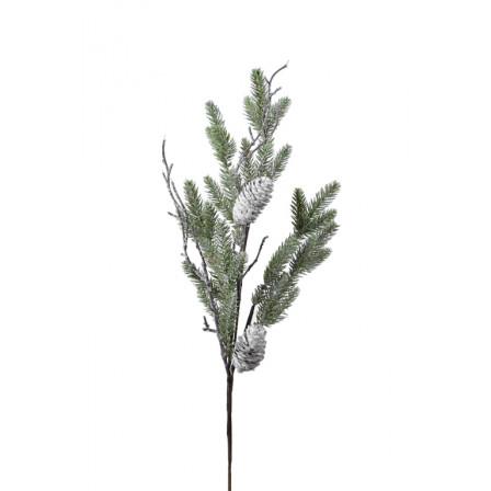 Větev jehličnatá bílá