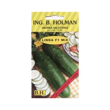 Okurka salátová LINDA F1 1,5g