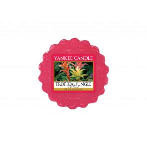 YA.vosk/Tropical Jungle ZT