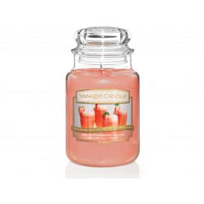 YC.sklo3/ White Strawberry Bellini ZT