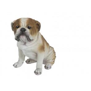 Bulldog H34x23x36cm