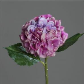 UK Hortenzie větvička fialová