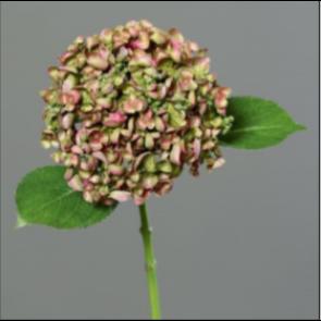 UK Hortenzie větvička zeleno fialová