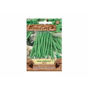 Fazol keříčkový zelený SIGMA