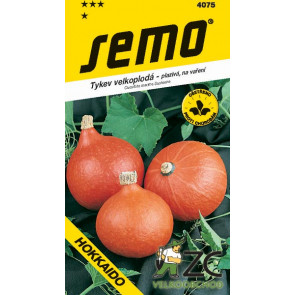 Tykev plazivá - Hokkaido orange 1,5g - osivo