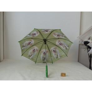 Deštník retrívr Ti
