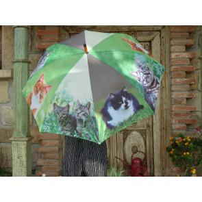 Deštník kočky TI
