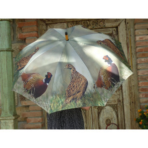 Deštník bažant TI