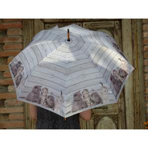 Deštník s koťátky TT