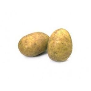 Sadbové brambory 5kg Carrera