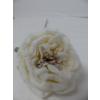 UK Zasněžená růže - béžová